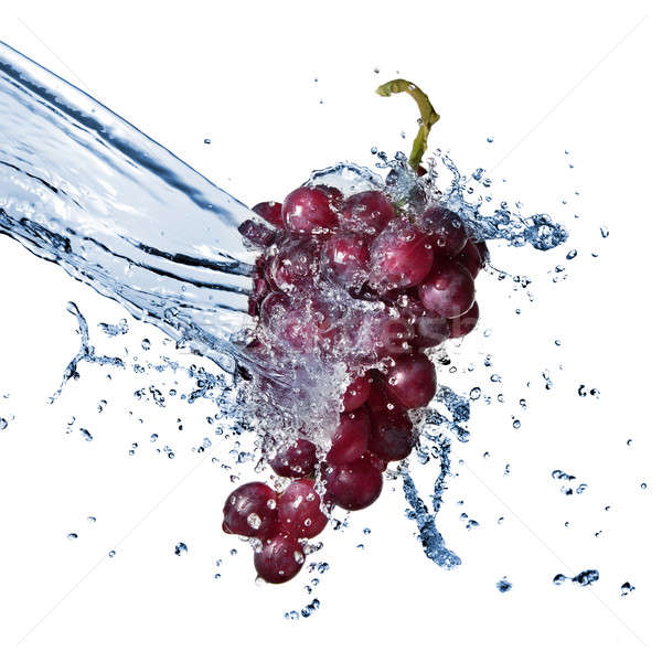 blue grape with water splash isolated on white Stock photo © artjazz