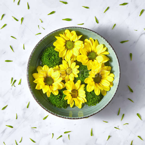 Spring yellow and green flowers in a blue bowl with water on a gray stone background with copy space Stock photo © artjazz