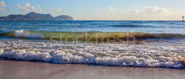 Waves sea shells Stock photo © artjazz