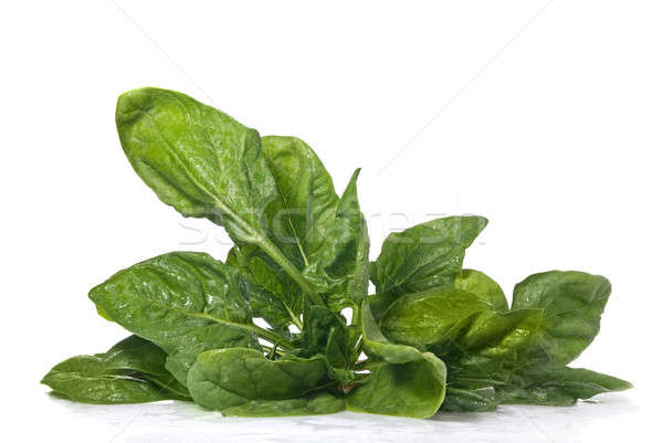 green spinach isolated on white Stock photo © artjazz