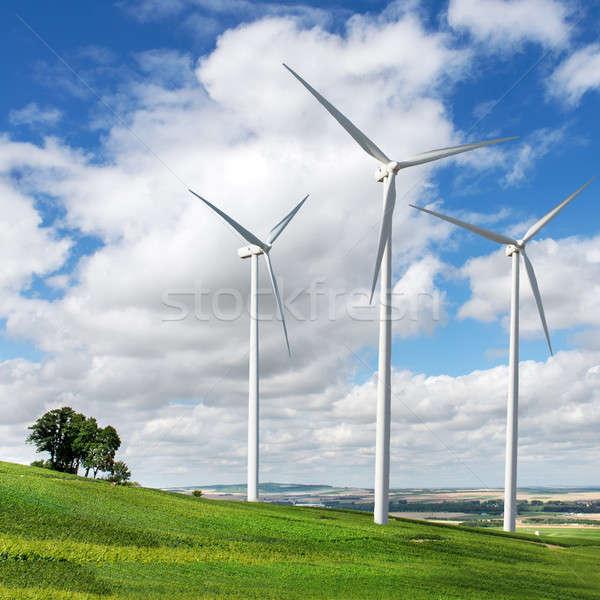 Wind generators turbines on summer landscape Stock photo © artjazz