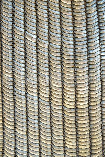 metallic armor Stock photo © artjazz
