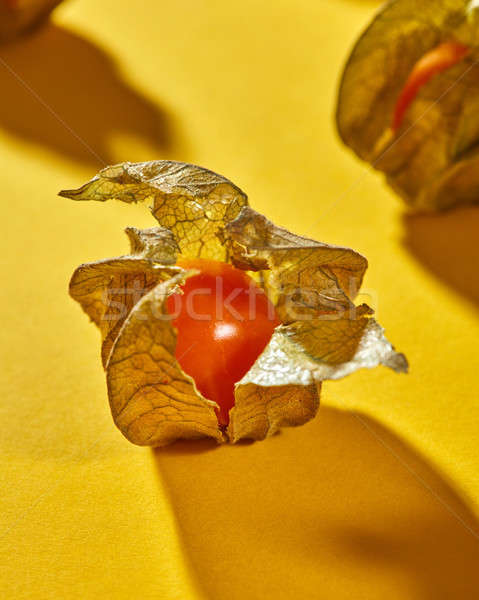Close-up view of yellow ripe, juicy physalis fruit with shadows on a yellow background, soft focus Stock photo © artjazz