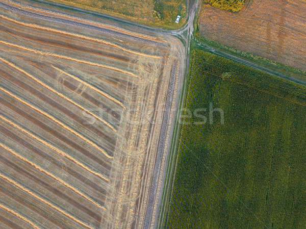View from the height of a bird's flight from flying drones to agricultural fields, prepared for sowi Stock photo © artjazz