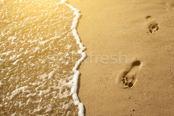 Traces of feet in the sand on the beach Stock photo © artjazz