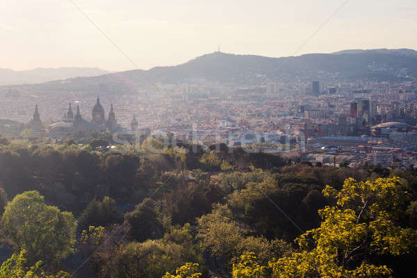 Barcelona şehir panoramik görmek dağ Stok fotoğraf © artjazz