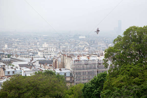 view on Paris from top of Montmartre Stock photo © artjazz