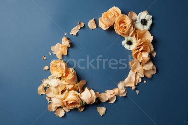 Ramki kwiaty kwiatowy wzór niebieski kobieta Zdjęcia stock © artjazz