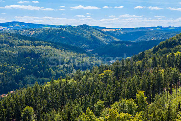 Mountains scenery. Panorama of grassland and forest Stock photo © artjazz