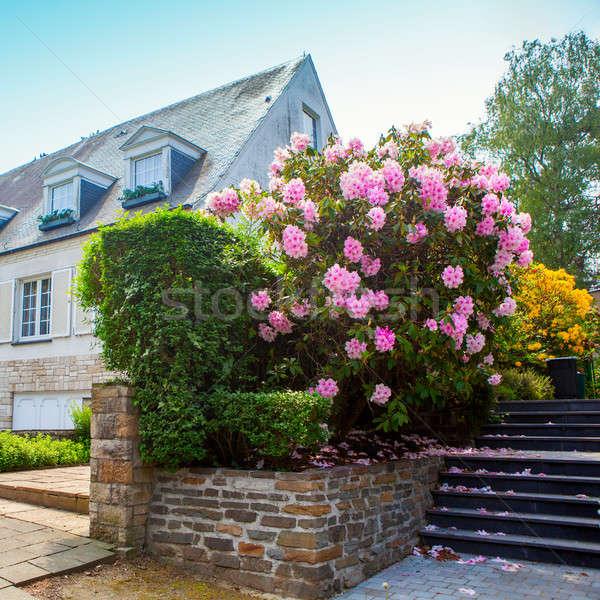 Naturelles pierre aménagement paysager maison jardin étapes Photo stock © artjazz