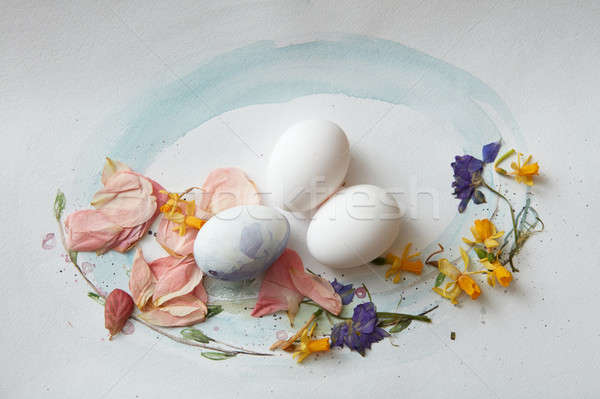 eggs on a paper Stock photo © artjazz