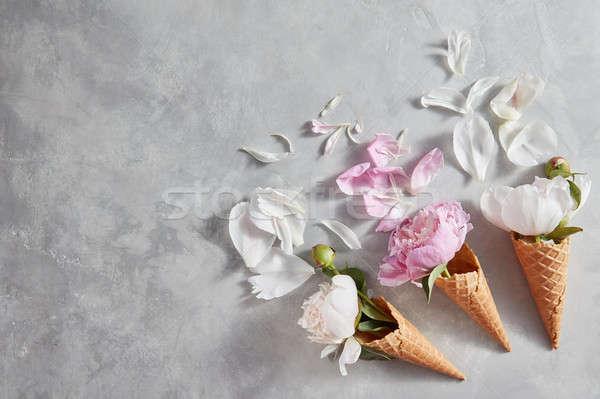 Creativo fiori wafer rosa bianco petali Foto d'archivio © artjazz