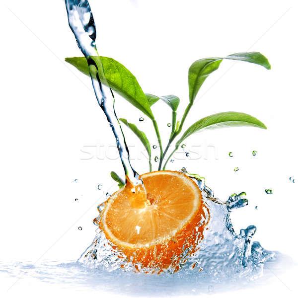 Stock fotó: Vízcseppek · narancs · zöld · levelek · izolált · vadvízi · cseppek