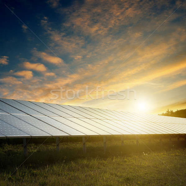 solar panels under sky on sunset Stock photo © artjazz