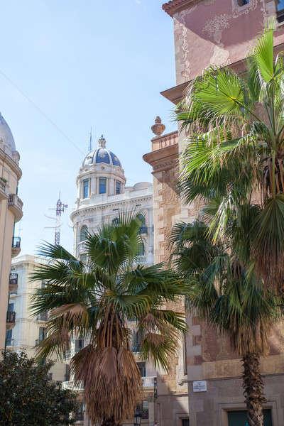 通り 装飾された ヤシの木 バルセロナ スペイン 建物 ストックフォト © artjazz