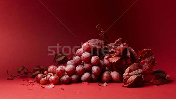 ripe fresh red grapes on a red background Stock photo © artjazz
