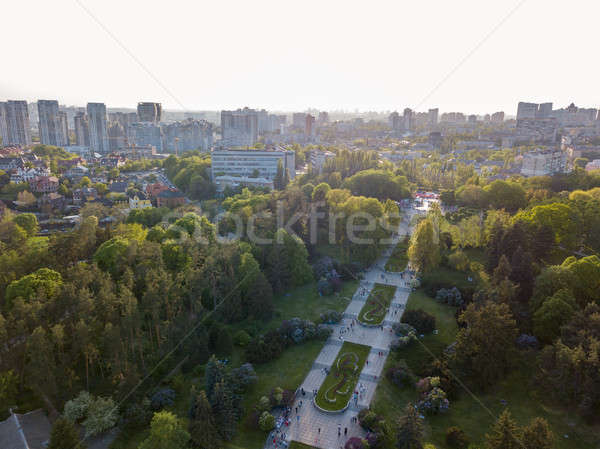 A bird's eye view, panoramic view from the drone to the view of the central alley of the Botanical G Stock photo © artjazz