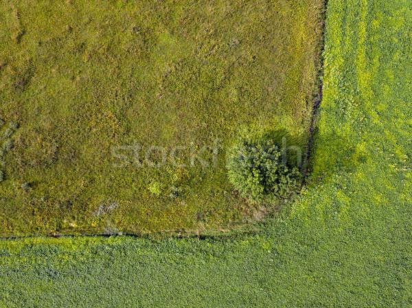 Panorámakép kilátás repülés mezőgazdasági mezők koszos Stock fotó © artjazz