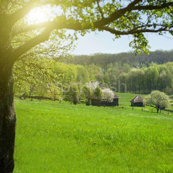 Starych domów zielone łące niebo domu Zdjęcia stock © artjazz