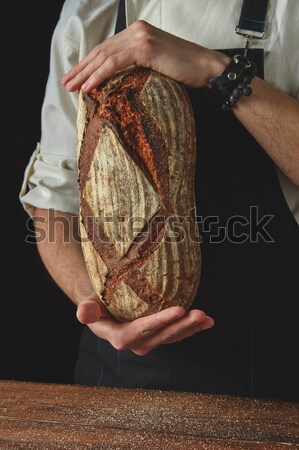 Baker's hands hold an oval bread. Stock photo © artjazz