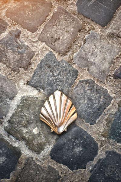 Santiago shell (Pilgrims shell), St James shell in Brussels, Bel Stock photo © artjazz