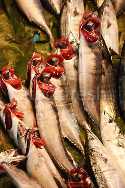 Freah fish in the store Stock photo © artjazz