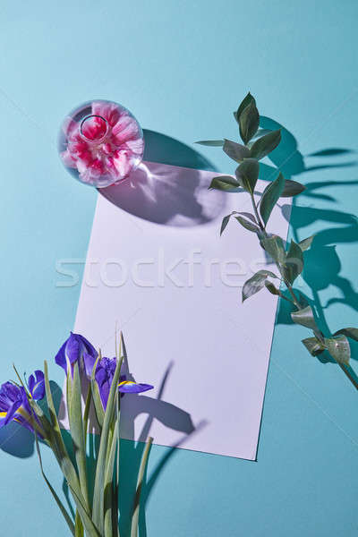 bouquet of irises on a blue background with a glass vase and a white paper, top view Stock photo © artjazz