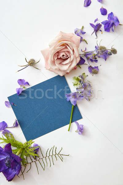 明信片 新鮮 花卉 空的 藍色 片 商業照片 © artjazz