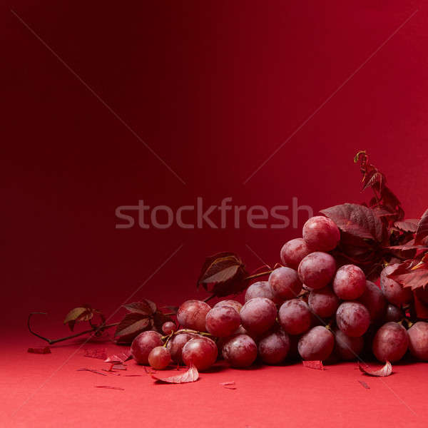 a bunch of ripe grapes on a red background Stock photo © artjazz
