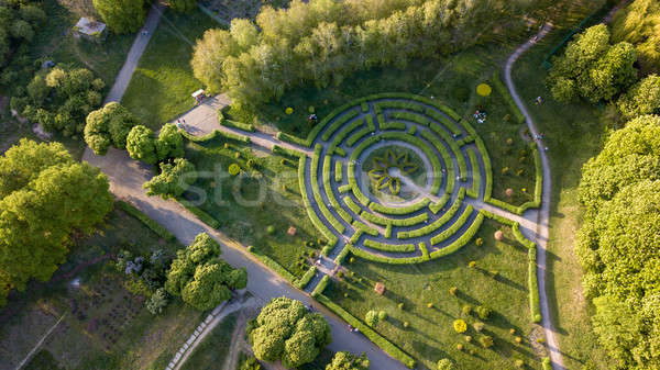 Aerial view a natural labyrinth in the botanical garden on a sunny day Stock photo © artjazz
