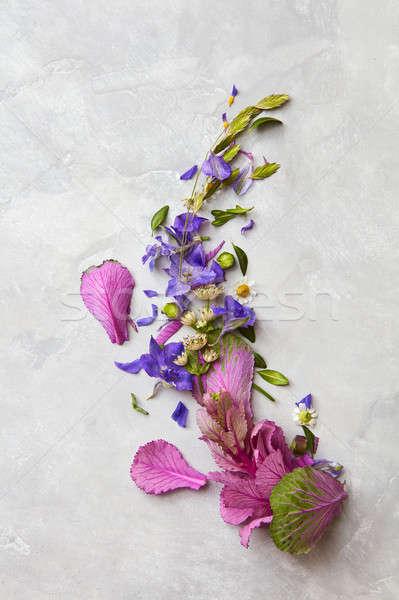 çiçekler gri kullanılmış bo gönderemezsiniz kart Stok fotoğraf © artjazz