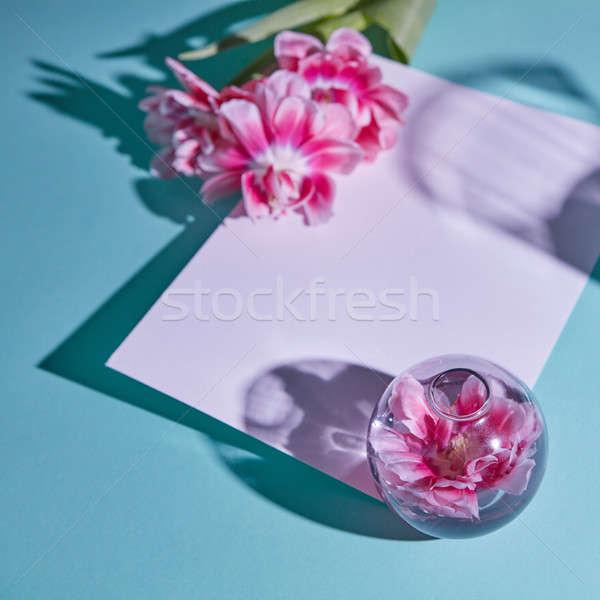 花 花瓶 チューリップ 青 はがき ストックフォト © artjazz