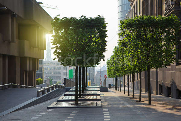 Brussels city center street on sunset Stock photo © artjazz