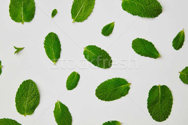 Flat lay view of green mint leaves isolated on white background Stock photo © artjazz
