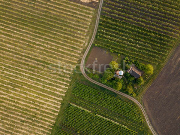 Agricole champs route maison haut vue Photo stock © artjazz