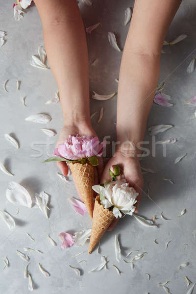 Tatlı kadın eller nazik pembe beyaz Stok fotoğraf © artjazz