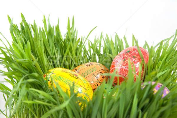 Renk paskalya yumurtası yuva yeşil ot beyaz Paskalya Stok fotoğraf © artjazz
