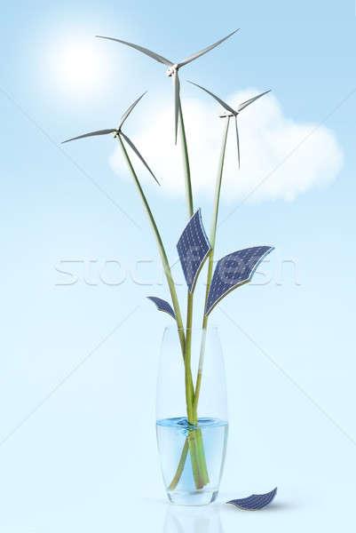 Groene energie bloem bladeren vaas water Stockfoto © artjazz