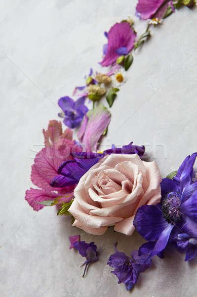 кадр роз углу Purple цветы свет Сток-фото © artjazz