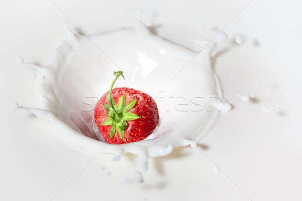 Strawberry dropped into milk with splash Stock photo © artjazz