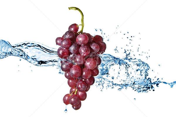 Stock fotó: Kék · szőlő · csobbanás · izolált · fehér · víz