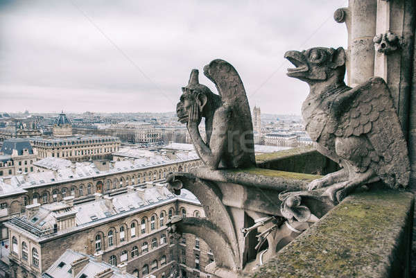 gargoyle sits on top of Notre Dame Stock photo © artjazz