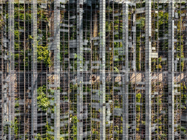 Top view of the old greenhouse. Photo from the drone Stock photo © artjazz