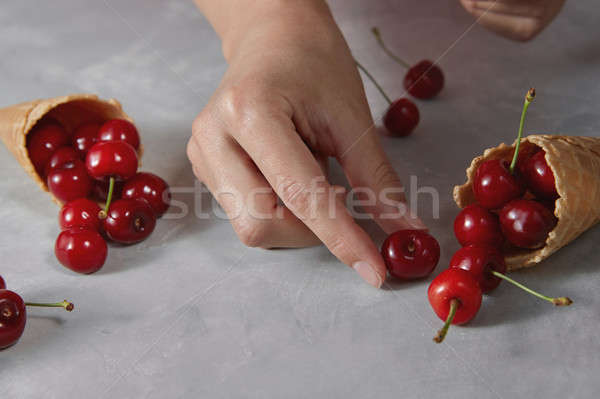 Natural organic fresh cherry fruits with wafer sweet cones and g Stock photo © artjazz