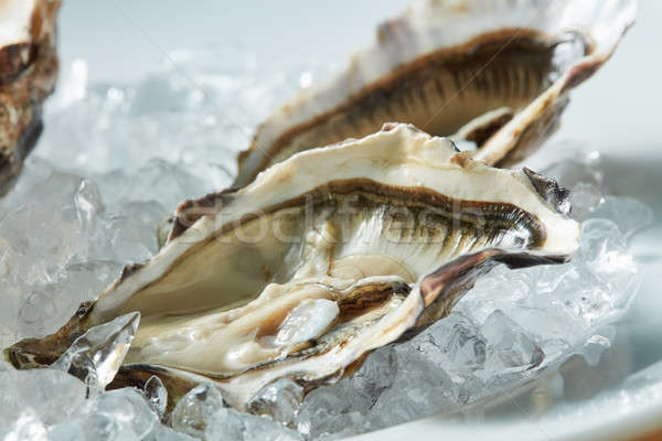 close up fresh raw oyster on a plate Stock photo © artjazz