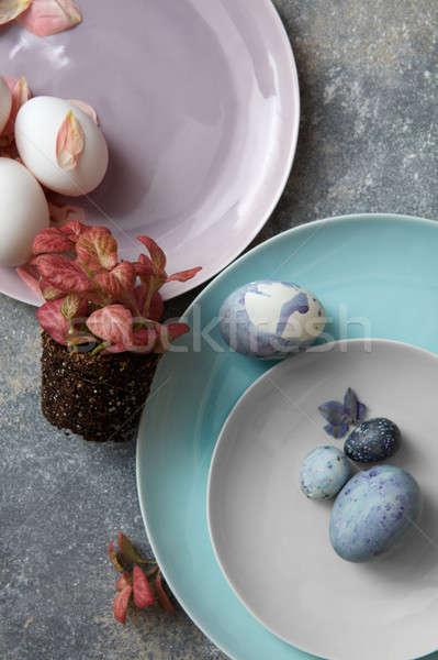 Yumurta plaka saksı beton Paskalya dizayn Stok fotoğraf © artjazz
