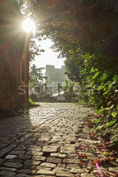 Street with old traditional houses and filigree sidewalk Stock photo © artjazz
