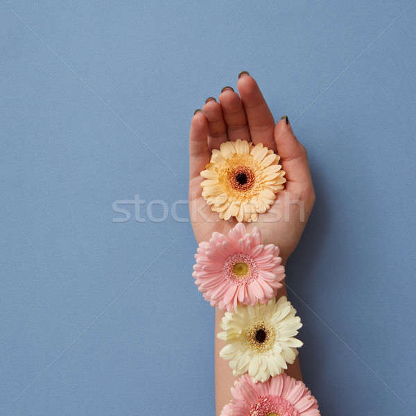 女の子 手 装飾された カラフル 青 紙 ストックフォト © artjazz