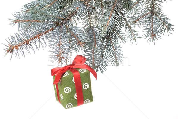 Noël cadeau branche isolé blanche Photo stock © artjazz