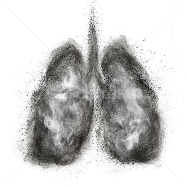 Lungs made of black powder explosion isolated on white Stock photo © artjazz